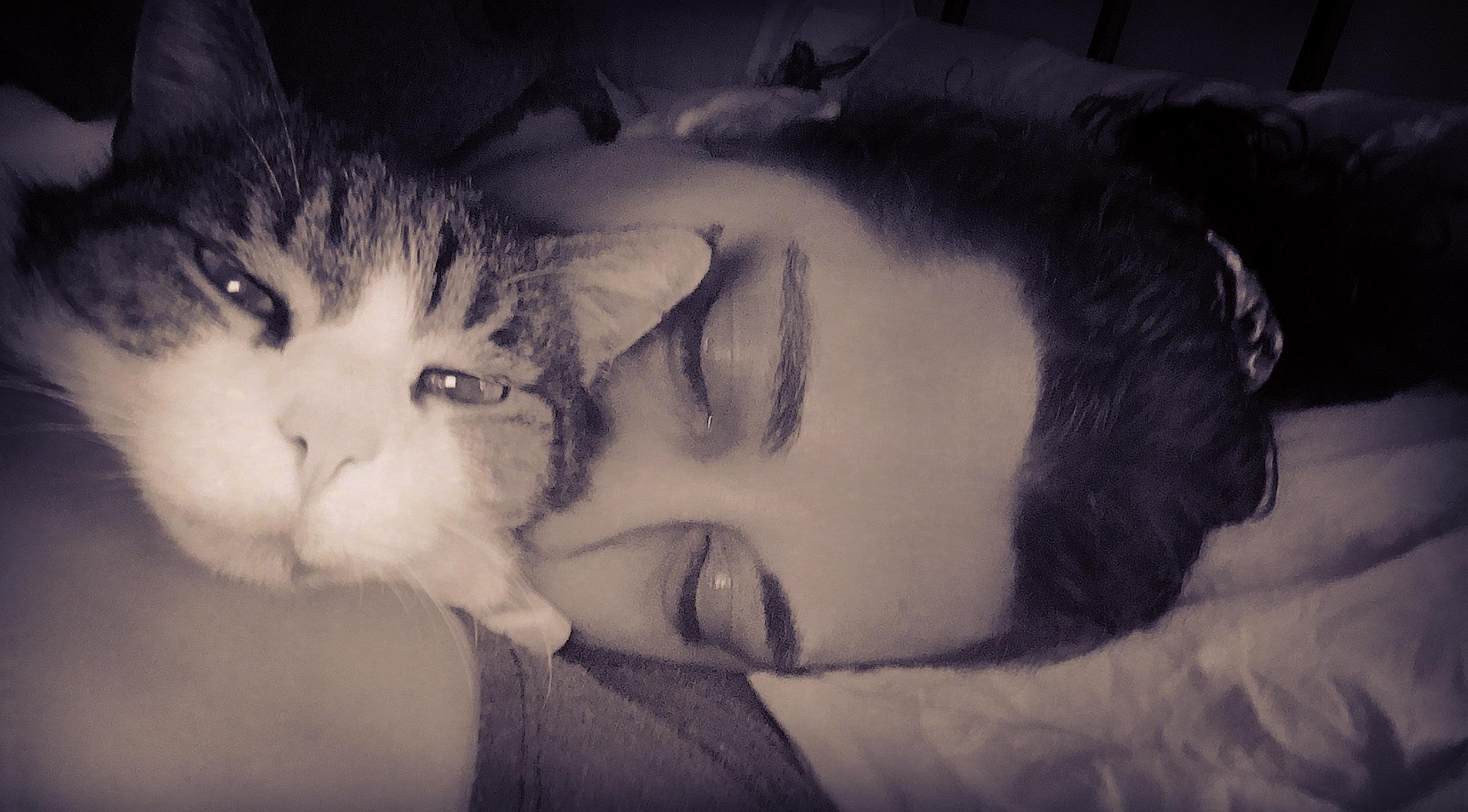 Mi gatito querido…